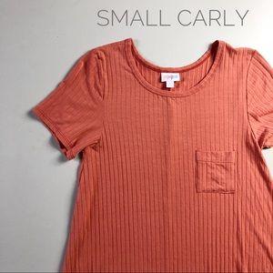 LuLaRoe Small Carly Swing Dress (NWT)